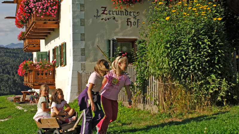 Discover the Zerund Farm